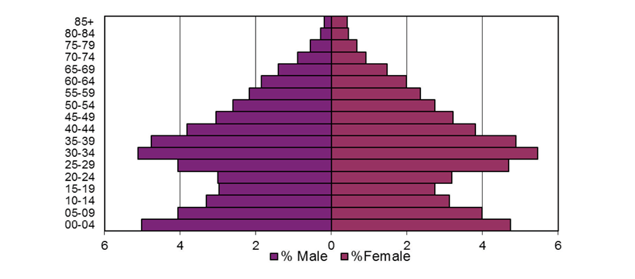 Fingal's Population Profile in 2011